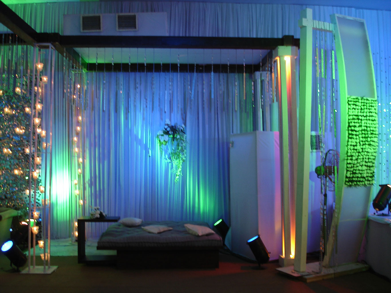 Wedding Decoration Flowers and Lights - Farm House, New Delhi